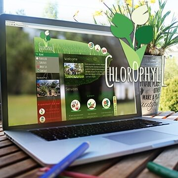 Webdesign Homepage Website Logo Design Chlorophyll